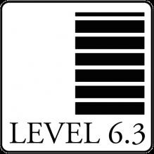 LEVEL 6.3