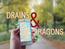 Drains & Dragons